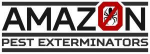 new-amazon-2015-upadated-logo